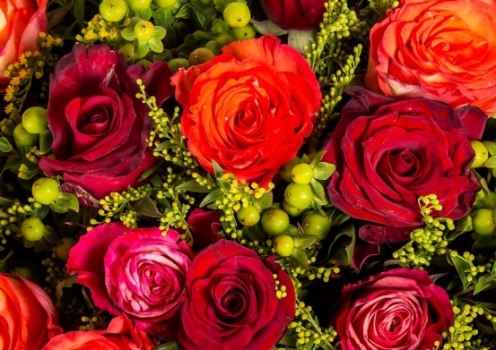 roses-signification